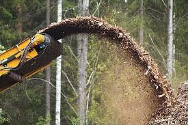 Преференции за тока от биомаса вече само при ползване на отпадна дървесина
