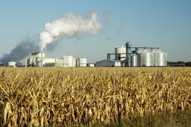 България не прави нищо за внедряване на биогоривата