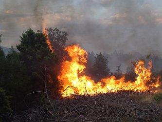 Голям пожар гори в бургаското село Изворище