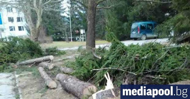 Екипи на община Враца започнаха оглед на щетите, нанесени по