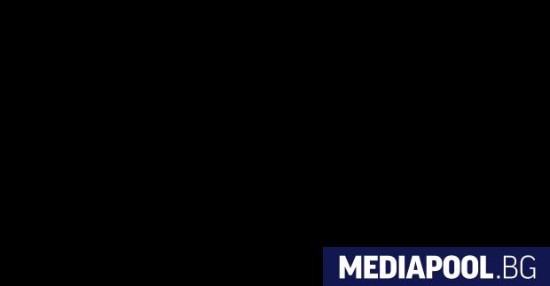 Маурицио Мартина Италианската Демократическа партия (ДП) ще реши на 3