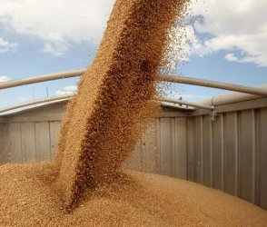 Едрите фермери са недоволни от орязването на субсидиите за земеделие след 2020 г.
