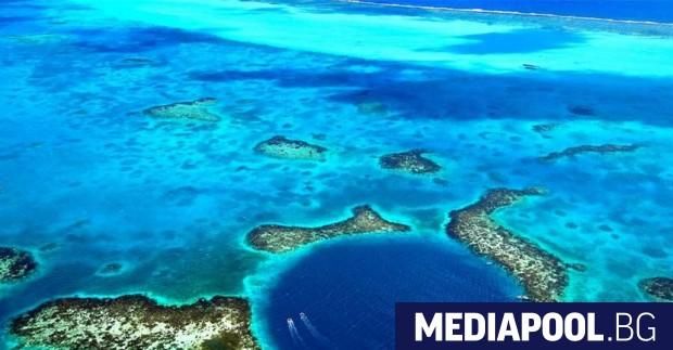 Снимка: ЮНЕСКО махна Бариерния риф на Белиз от застрашените обекти