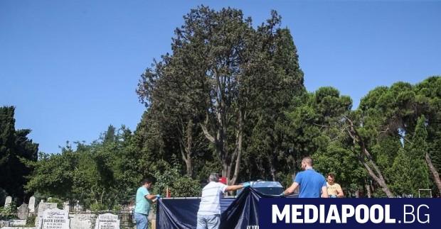 Снимка: Ексхумираха тялото на Наим Сюлейманоглу заради дело за бащинство