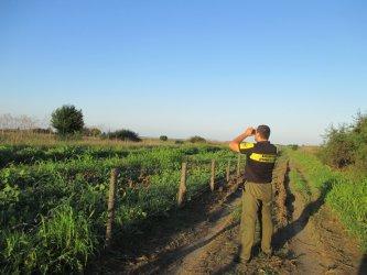 Над 110 км от 133-километровата ограда по границата с Румъния вече е готова