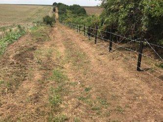 400 горски дебнат да не влизат прасета от Румъния