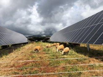 Най-големият в света хибриден енергиен парк заработи на хавайски остров