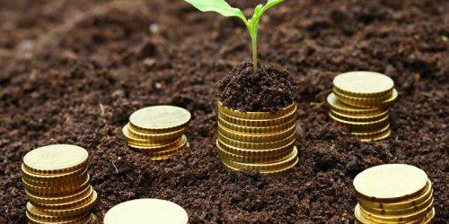 Фермерите ще получат близо 3 млрд. лв. субсидии през 2019 г.