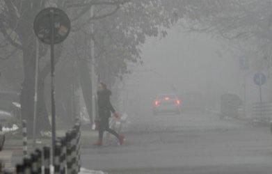 ООН: Замърсяването на въздуха е заплаха за човешките права