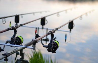 Забрана за улов на риба влиза в сила от 15 април