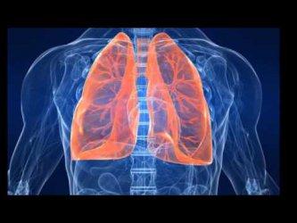 И пушачите на бездимни цигари да изследват белите си дробове, призовават водещи пулмолози