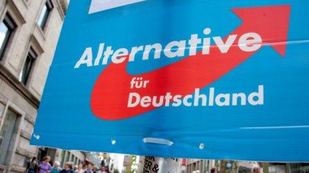Крайнодясната Алтернатива за Германия доминира кампанията в социалните мрежи