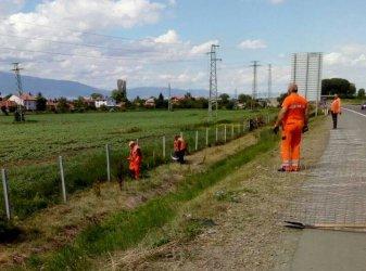Пътната агенция скоростно поправя оградите по магистралите