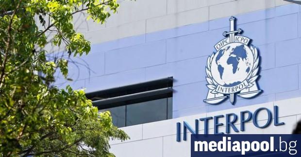Организацията Интерпол съобщи, че е разбила международна мрежа от педофили,