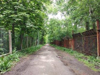 Фандъкова върна плана на Борисовата градина на поправителен