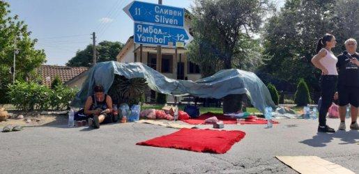 Протестите срещу ликвидирането на прасетата поискаха оставката на правителството