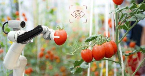 Живот и работа с роботи и други технотенденции до 2025 г.