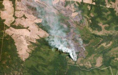ЕС обмисля търговски санкции срещу Бразилия заради пожарите в Амазония