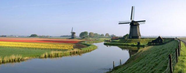 Близо 100 компании са се преместили от Великобритания в Холандия преди Брекзит