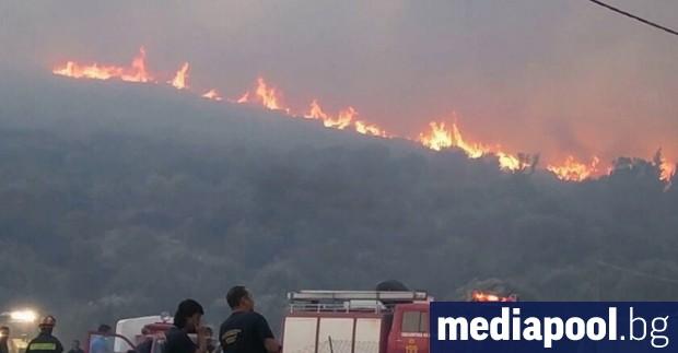 Десетки пожари избухнаха през почивните дни в Гърция, причинявайки силно