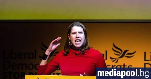 По-малки проевропейски партии във Великобритания обявиха, че сключват предизборен съюз