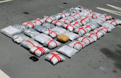 Над един тон кокаин е събран от атлантическите брегове на Франция