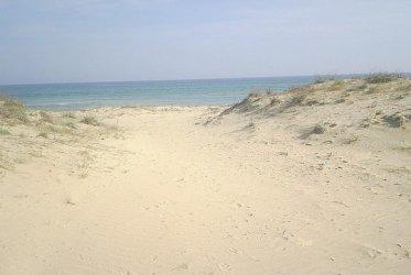 Държавата придвижва продажбата на 31 дка с дюни край Несебър