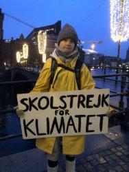 Грета Тунберг пак излезе на демонстрация пред сградата на шведския парламент
