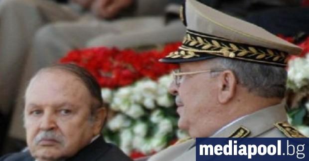 Алжирската армия - стълб на режима, свикнала през години да