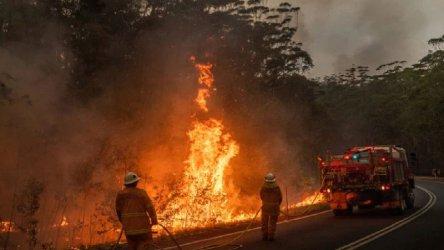 2019-та е била най-горещата и най-суха досега година в Австралия