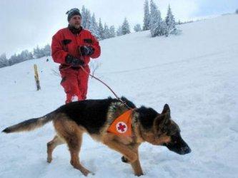 Трети ден издирват изгубени туристи под връх Ботев