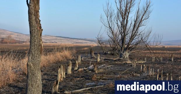 Министерство на околната среда и водите (МОСВ) отказва по-строга защита