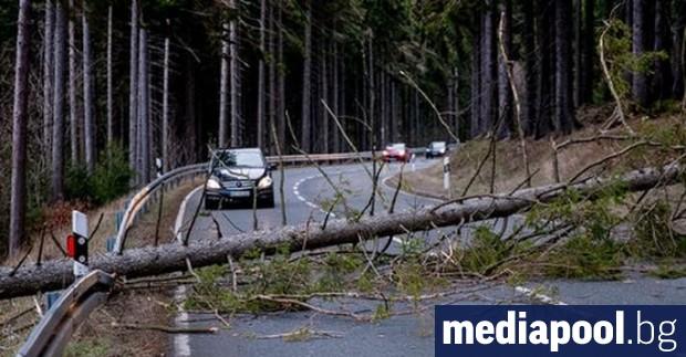 Бурята Киара отне живота на един човек в Швейцария, с