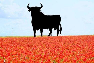 Испания обяви блокада, епидемията експлодира