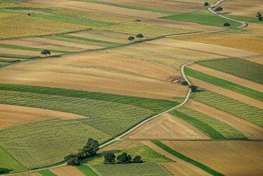 Промени в кампанията за директните плащания на фермерите