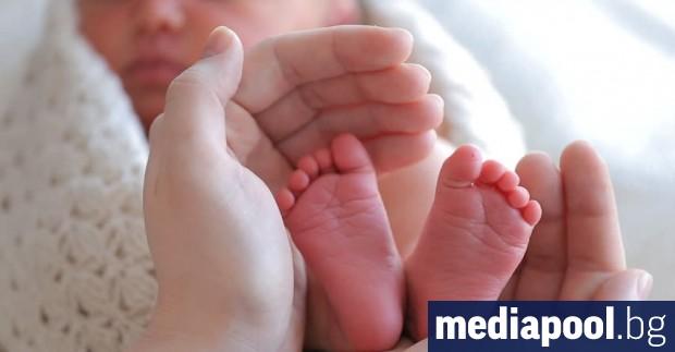 Ражданията в България намаляват и през 2019 г., а в