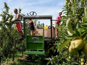 Източноевропейски сезонни работници поемат за Германия въпреки ограниченията