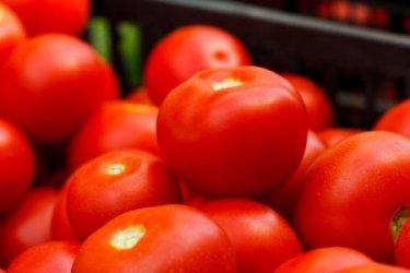 Над 24 т вносни зеленчуци с пестициди ще бъдат унищожени