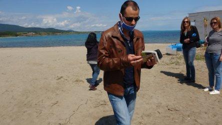 Концесионерът на плажа в Ахтопол увредил защитени дюни