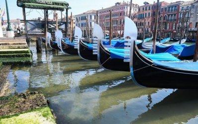 Венеция и цялата област Венето са готови да посрещат туристи