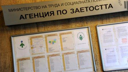 Близо 29 000 души са започнали работа през извънредното положение