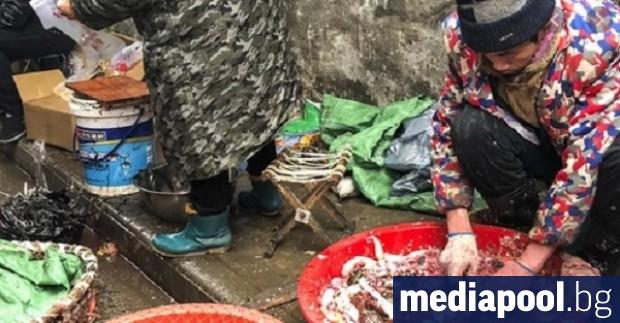 Животинският пазар в град Ухан, Централен Китай е изиграл роля