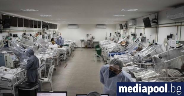 В Бразилия за 24 часа бяха регистрирани над хиляда смъртни