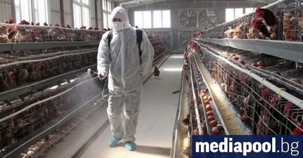 До 7 хил. евро еднократно ще получи български земеделец, чието