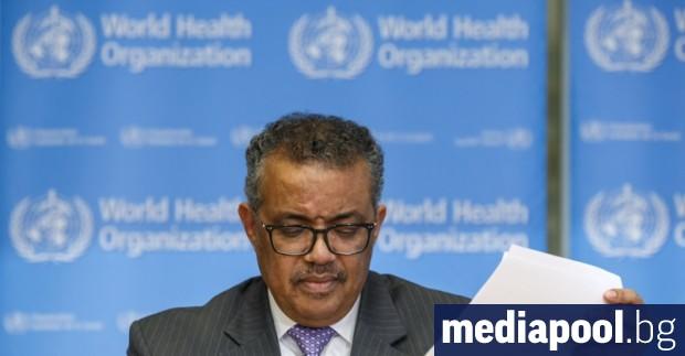 Световната здравна организация (СЗО) очаква следващата седмица броят на починалите