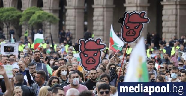 Години наред се вбесявах от отказа на протестиращи да викат