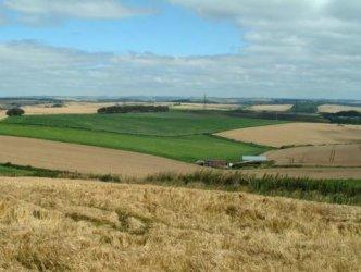 Фермери имат 15 дни да декларират изгорели ниви иначе губят европари