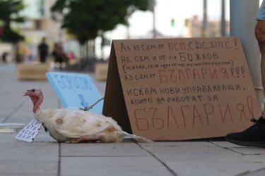 """Ден 23: Мисирка на площада и неуспешен опит за блокада на магистрала """"Тракия"""""""