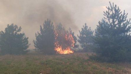 Нови пожари в Хасковско, избухналите преди дни са под контрол