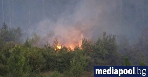 Пожарът, който тръгна от Тополовградско и днес се прехвърли в